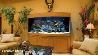 40 Amazing Aquarium Fish Ideas 2016 - Creative Home Design Fish Tank and Colors -newest home decor