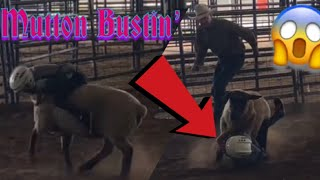#Childrens #Rodeo #MuttonBustin' #SheepRiding #Sheep #Kids #Fun #Activities | Daily Dose Of Dallas