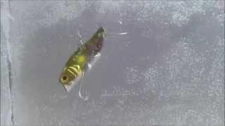 ノッキンジョー1/4oz(ジャッカル)を 水質:クリアウォーター(透明) ...