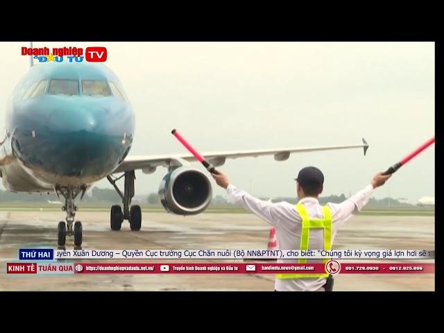 Thua lỗ 10.750 tỷ đồng sau 9 tháng, Vietnam Airlines tuyên bố không phá sản
