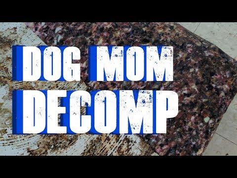 S2 Episode 4: Dog Mom Decomp