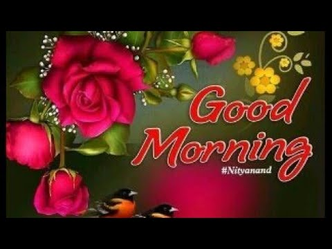 Good Morning Monday Images, Whatsapp Images, Beautiful Images, Wallpapers, Flowers Images & Status