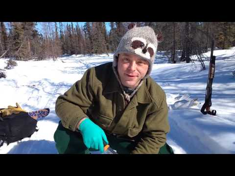 Hunting, Cooking and Great Weather! Ptarmigan, Fire and the Boreal Forest