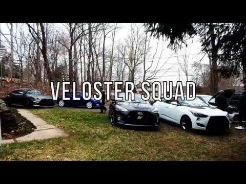Veloster Squad 2016