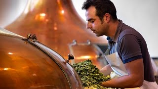 """Chemistry of Beer"" is a free online course on Janux that is open t..."