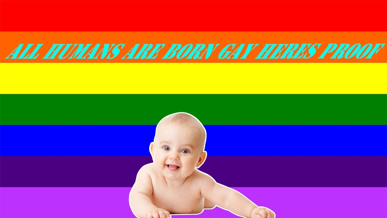 gay Are all humans