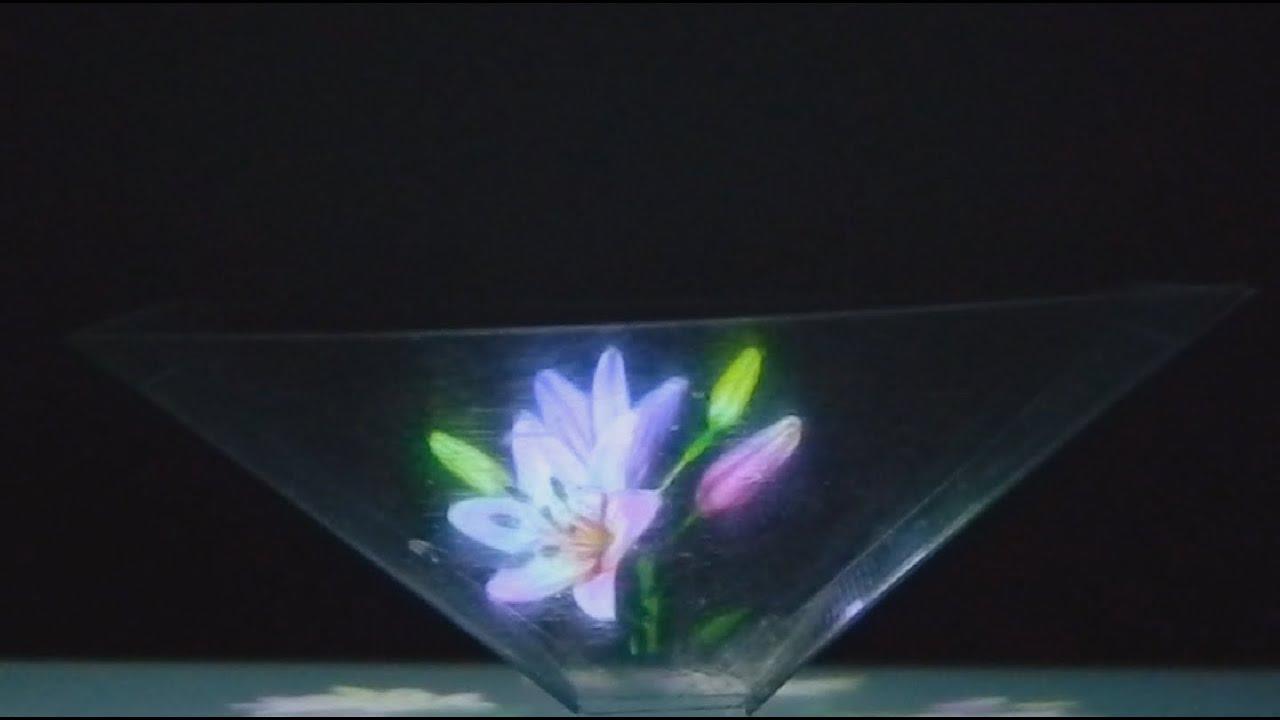 цветы и колибри фото