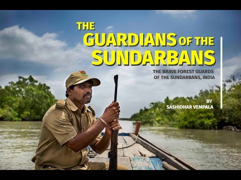 The Guardians of the Sundarbans