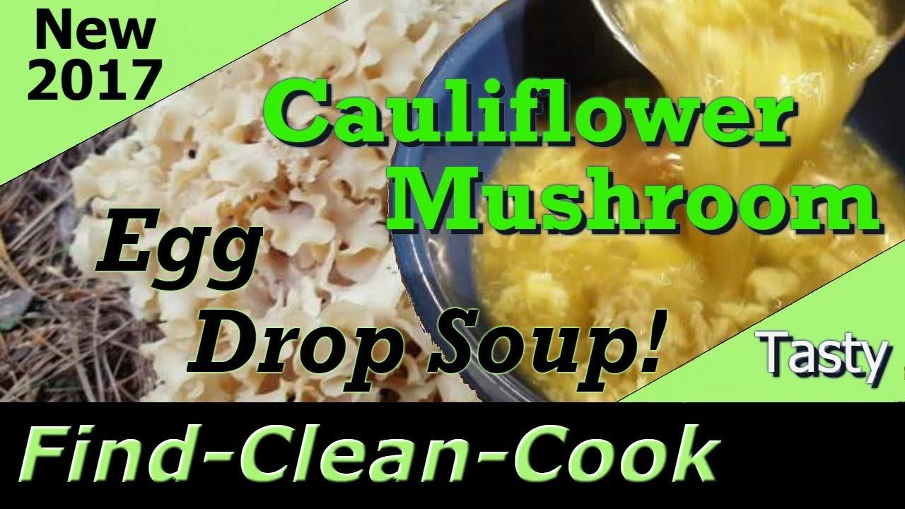 Cauliflower Mushroom Look Alikes