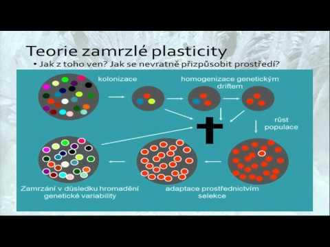 Nečtiny 2015 // Jan Toman: Teorie zamrzlé plasticity a zamrzlé evoluce: paradoxy neadaptability