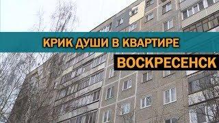 Черная плесень, сырые стены - типичная квартира в Воскресенске