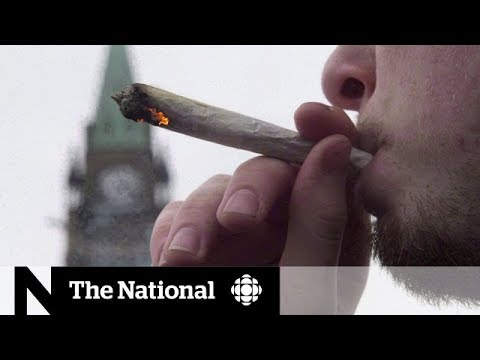 Tax revenue deal for pot agreed on