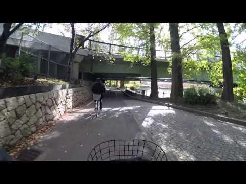 Cycling in Osaka : Ōyodominami _ Shirokita Koen Dori _ Cycling along the River 大川