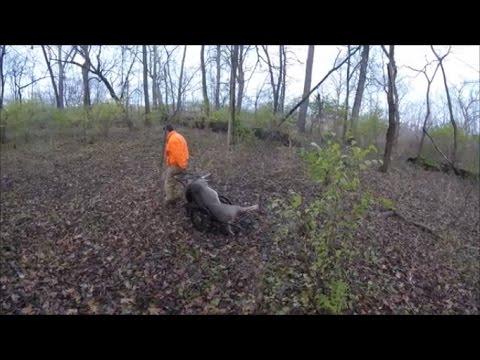 Deer Hunting 2016 - Deer camp - #3 The hunt