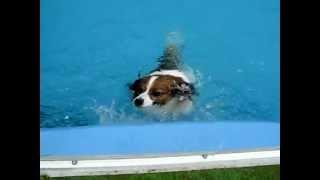 1日経って何とか泳げるようになりました。