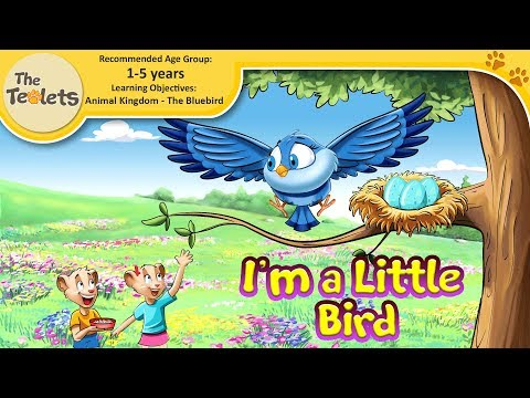 I Am A Little Bird I Animal Songs I Bluebird I Best Nursery Rhymes And Kids Songs I The Teolets