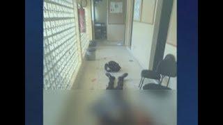 Imagens fortes: gritos e morte dentro do colégio