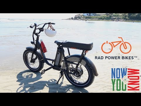 Rad Runner - High End Affordable e-Bike?