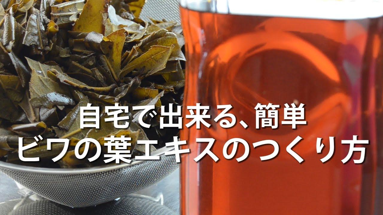 茶 作り方 びわ の 葉