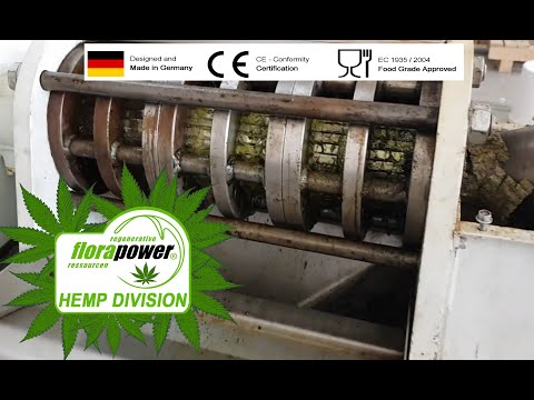 Hemp Seeds Pressing, Industrial Hemp Pressing with automatic screw press by Florapower.de