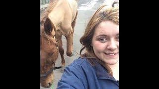 Die Tierschützer sehen das Selfie im Internet, und handeln ohne zu zögern!