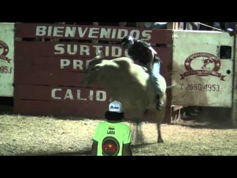 Programa 279 Montas Santa Bárbara y Buenos Aires Santa Cruz