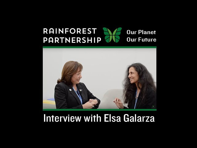 Our Planet. Our Future. - Interview with Elsa Galarza at COP23