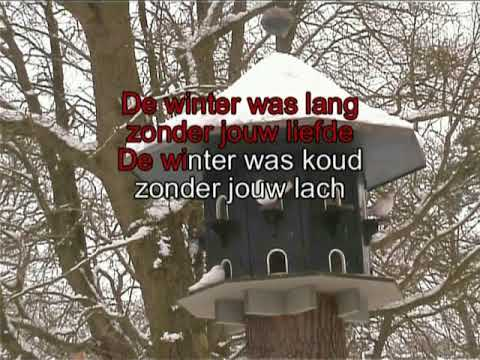 Willeke Alberti  - De winter was lang ( KARAOKE ) Lyrics