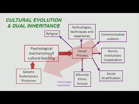 Download Joe Henrich: Cultural Evolution and Dual Inheritance