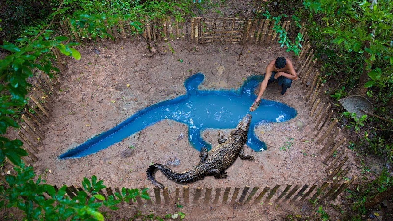 primitive Technology: Building Crocodile Pond Underground