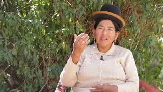 Censos 2017: Identifícate con orgullo como indígena u originario