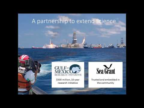 Seminar overview, Responding to oil spills: Offshore and deep sea habitats