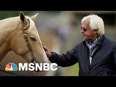 Medina Spirit Treated With Ointment Which Included Banned Drug | MSNBC