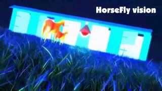 видео Ловушка для мух и слепней H-Trap