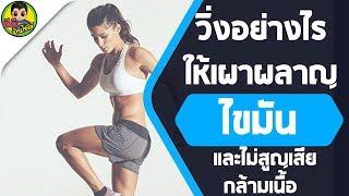 วิ่งอย่างไรให้เผาผลาญไขมัน และไม่สูญเสียกล้ามเนื้อ
