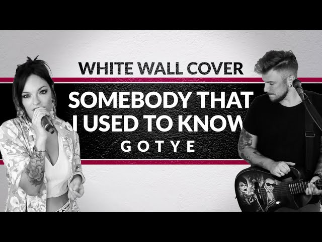 Gotye - Somebody That I Used To Know [ Family Business Duo Cover ]