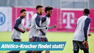 🔴 Bayern-Spiel gegen Atlético findet statt | BILD live
