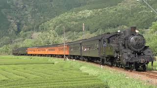大井川鐵道 C10-8+客車7両+いぶき501 SLかわね路…