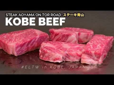 Best restaurant for Kobe Beef (Steak Aoyama Review) || Japan Travel Guide Series 2018 🇯🇵  Kobe