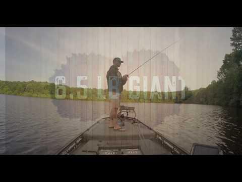 6.5 pound Giant Bass