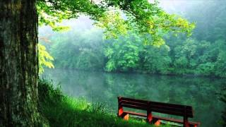 Tumi Robe Nirobe |Tagore Song 01 Relaxing Piano Instrumental |