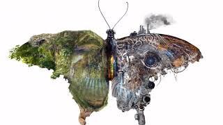 """DUALITY (The Moth)"" MOVING - Hanif Wondir - 2019"