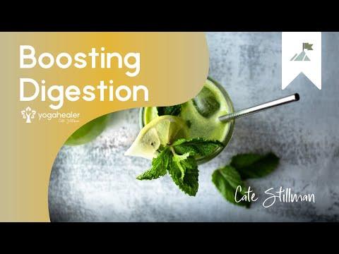Eating Food for Summer + Boosting Digestion with Dr. John Douillard