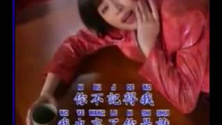 Phei Ciu 陪酒 林淑娟 Karaoke with Lyric