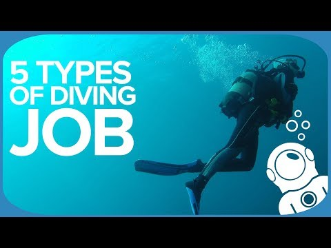 5 Types Of Diving Job