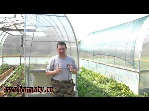 Как спасти рассаду от ожогов в теплице