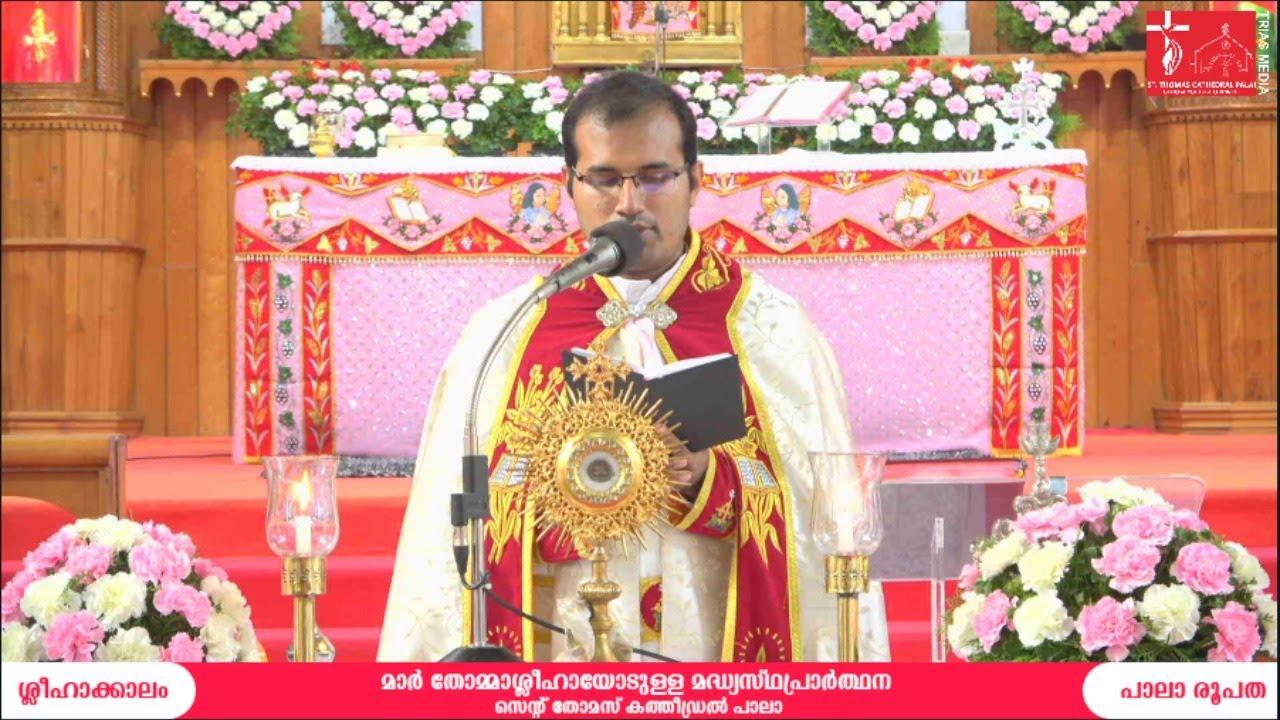 വിശുദ്ധ കുർബാന | 02-07-2020 | Syro Malabar Holy Qurbana | Live From St.Thomas Cathedral Pala |