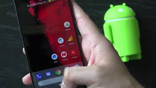 My Review about Essential Phone Long Term Review After 1 Year And Android Pie