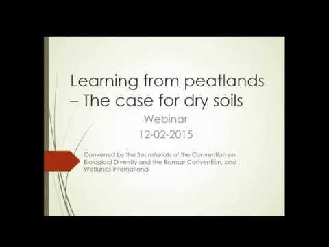 'Learning from Peatlands - The Case for Dry Soils' webinar