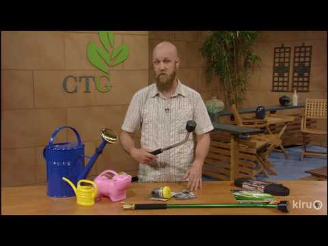 Top Watering Mistake to Avoid |Neil Schmidt |Central Texas Gardener